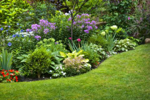 Landscaping: Different Types of Edging