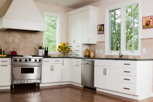 Pro-Style Range for a Home Kitchen