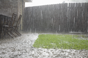 Tips for Effective Yard Drainage