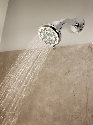 Nurture Eco-Performance Showerhead by Moen
