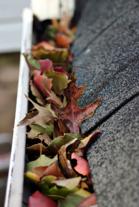 Cost of Gutter Guards: Are They Worth It?, Cost of Gutter  Guards: Are They Worth It?