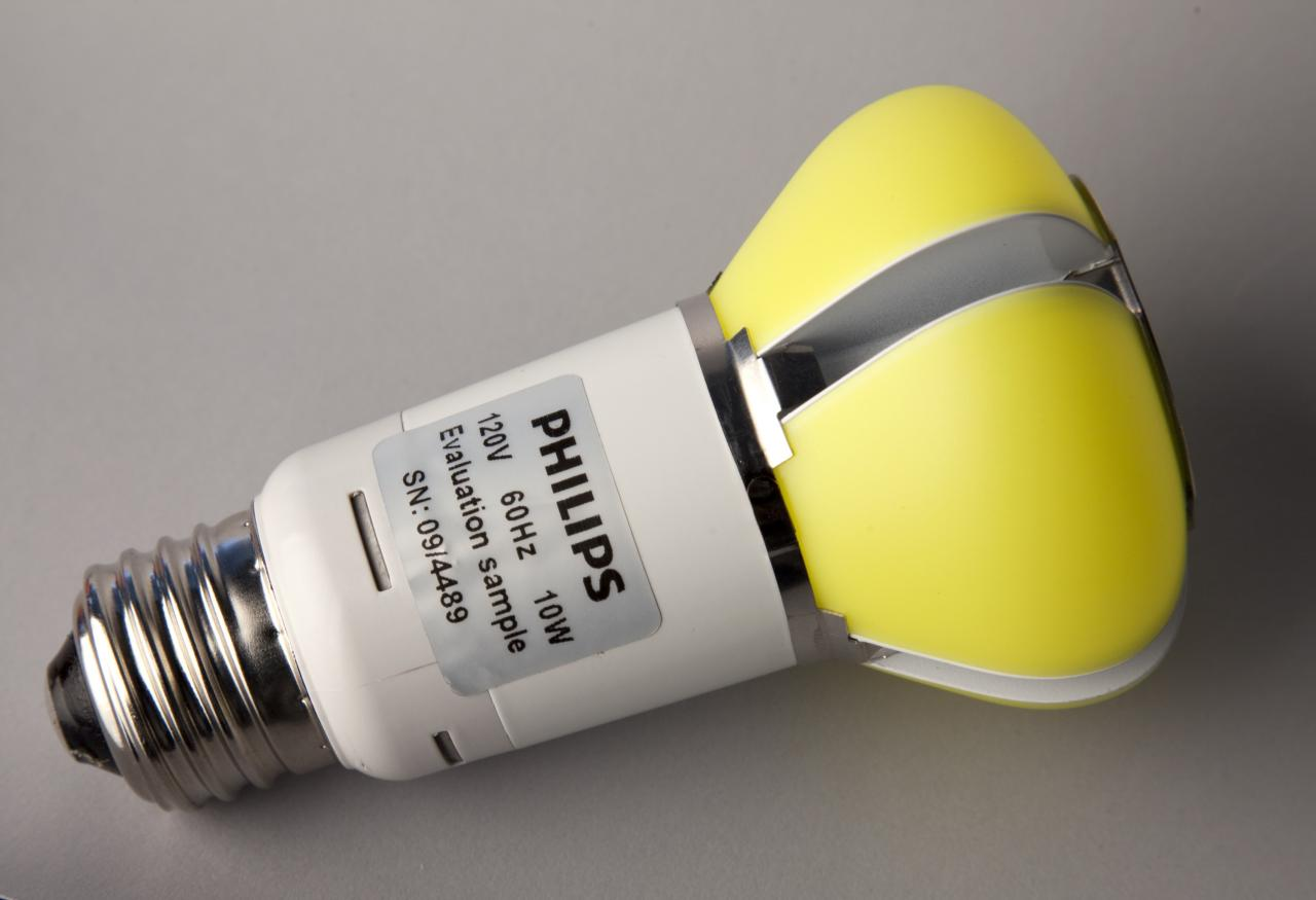 Philips Award-Winning LED Bulb