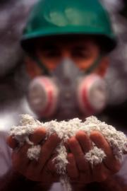 Asbestos siding may not be dangerous.