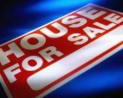 House Agent:<br />     Choosing a Real Estate Agent