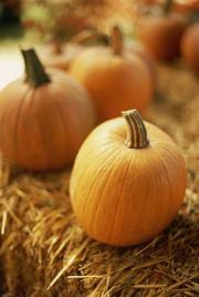 Fall Home Improvement Fix-Ups Made Easy