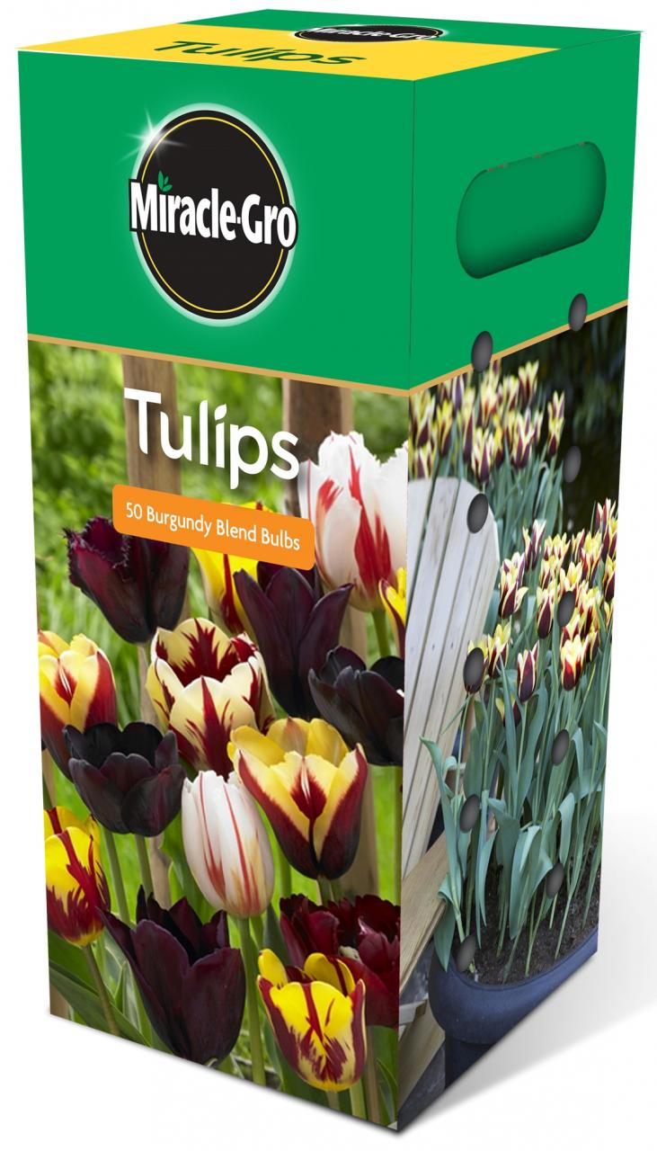 Scott's Miracle-Grow Tulips