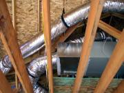 House Mold: The Causes and Costs of Mold