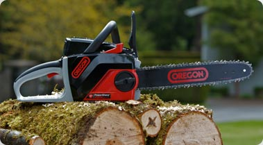 OREGON PowerNow 40 MAX Chainsaw
