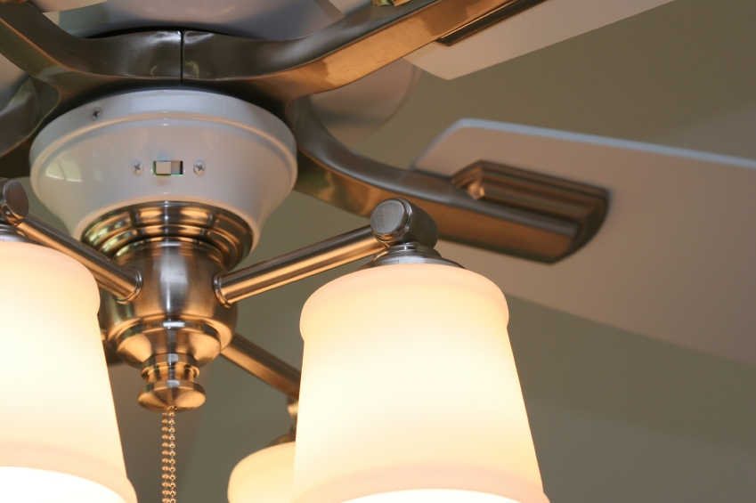 Summer Spin for Ceiling Fan