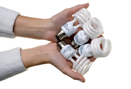 Shopper's Guide to New Energy-Efficient Light Bulb Options