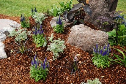 How to Use Mulch to Protect Your Landscaping