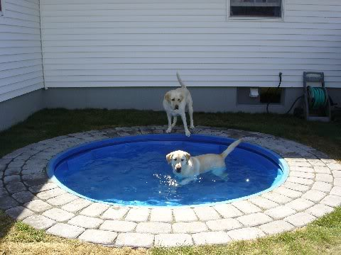 Build a Combo Kiddie Pool/Fire Pit