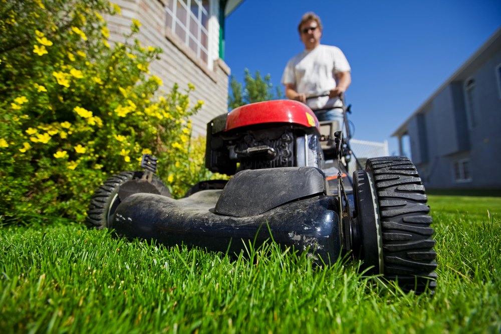 Grass Mowing Tips to Maintain a Healthy Lawn
