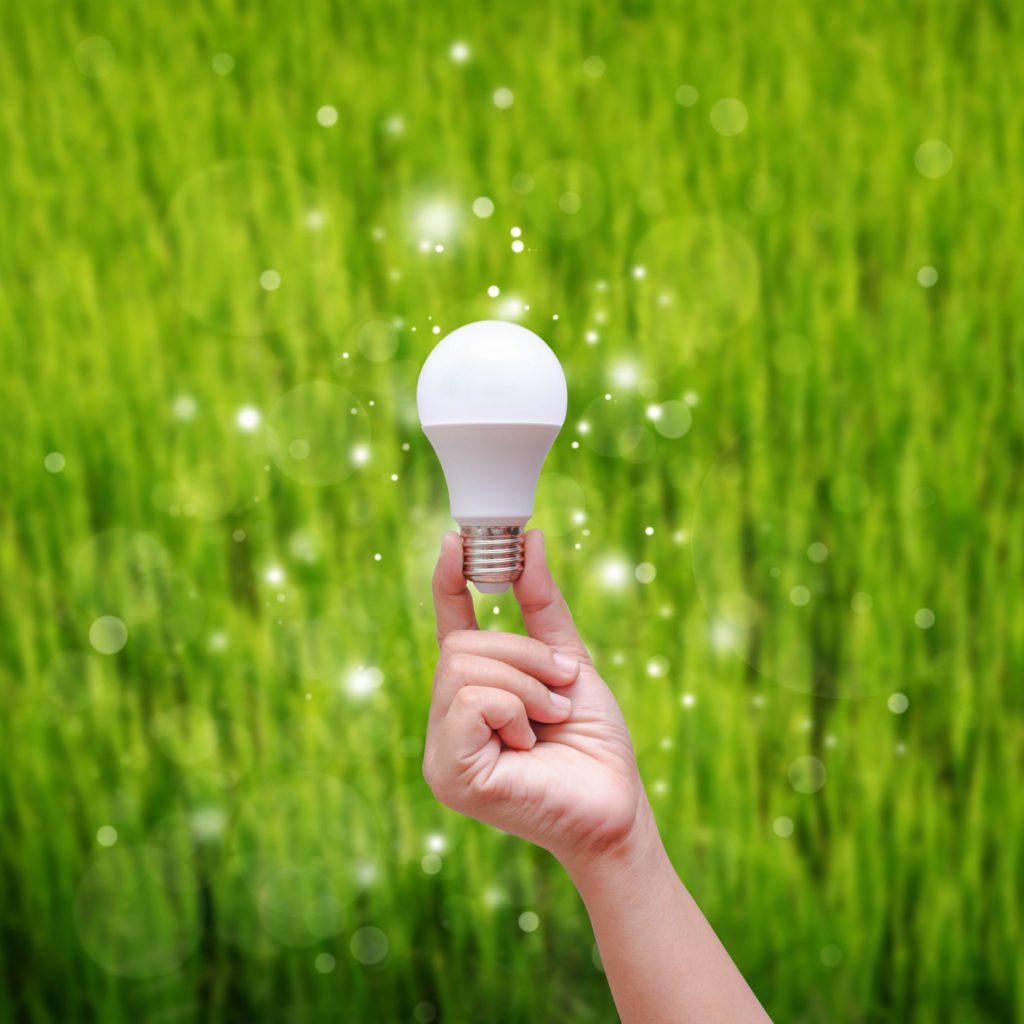 LED bulbs, energy efficiency, energy efficient lighting