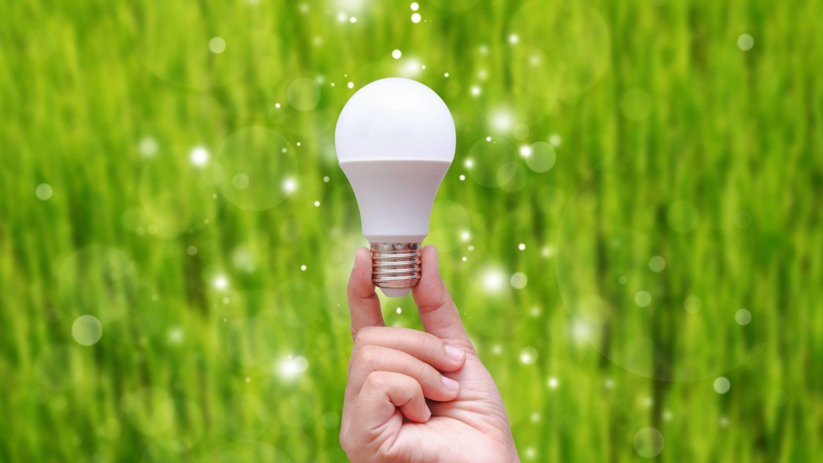 LED bulbs, energy efficiency