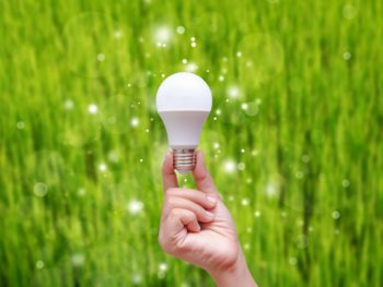 LED bulbs, energy efficiency
