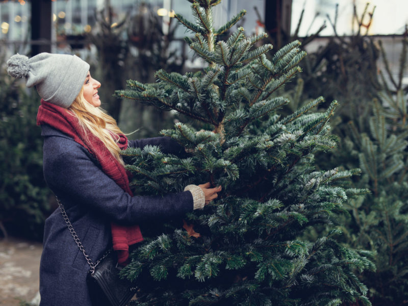 Woman picking out a great Christmas tree