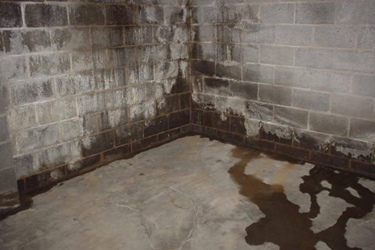 leaking, basement