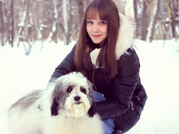 dog, pet, winter, snow