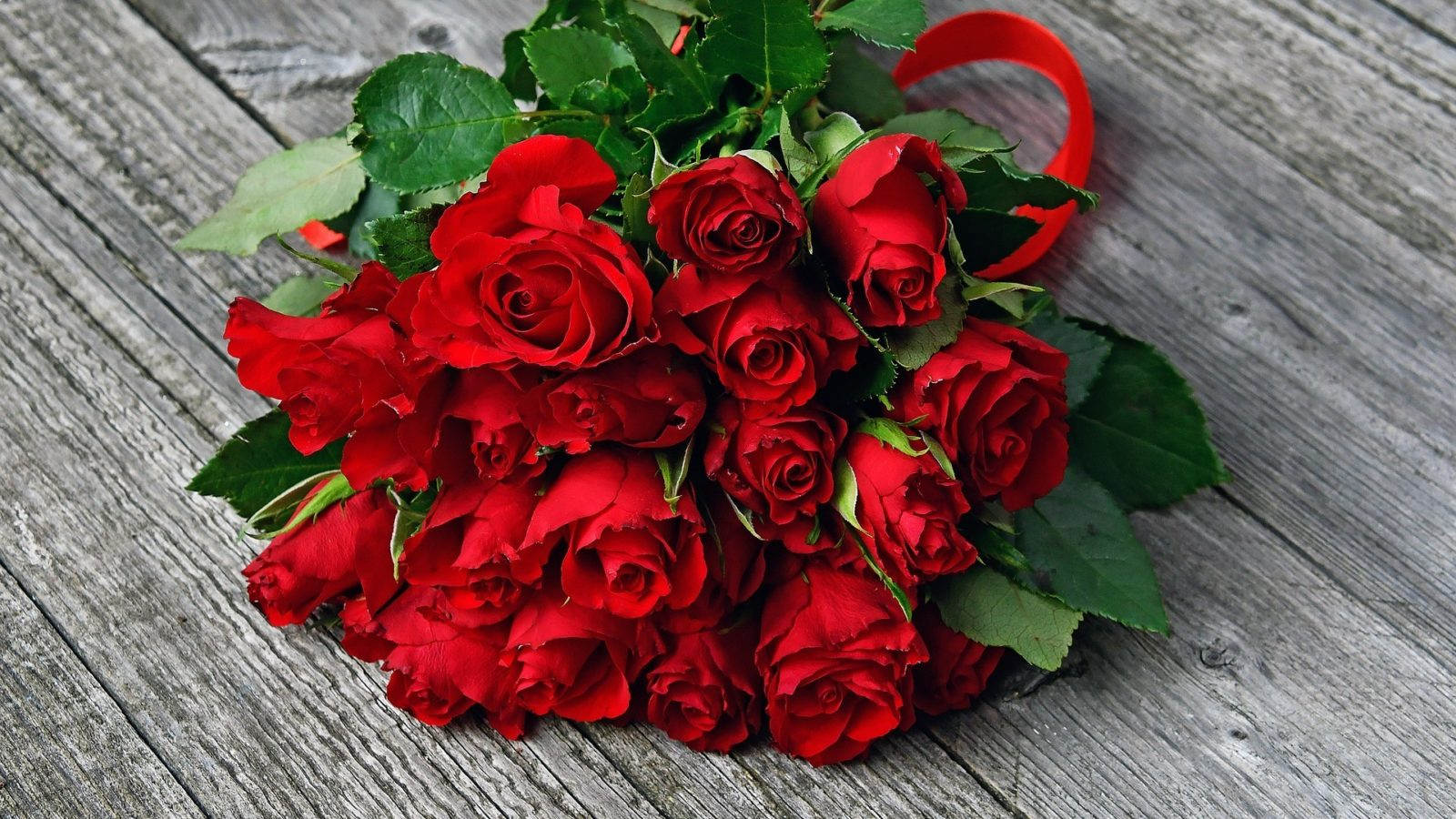 Boquet of red roses for Valentines Day.