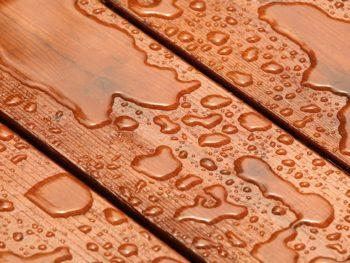 deck, treated wood