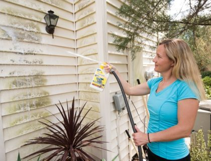Spray-and-Forget-Roof-Cleaner_0260