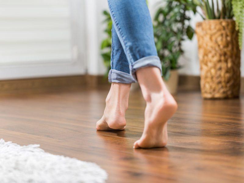 squeaking floor, pet friendly floor