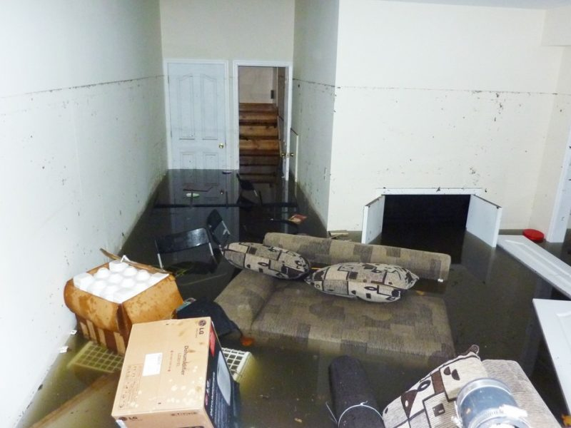 recover after basement flooding