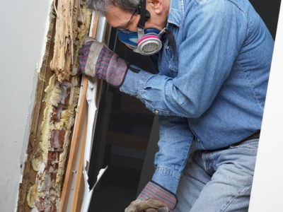 Termite damage in a wood door frame