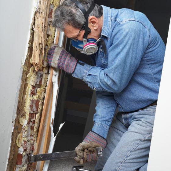 Repair Termite Damage and Rot