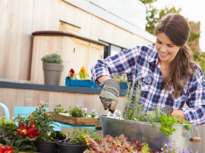 Container gardening is great for both inside and outside