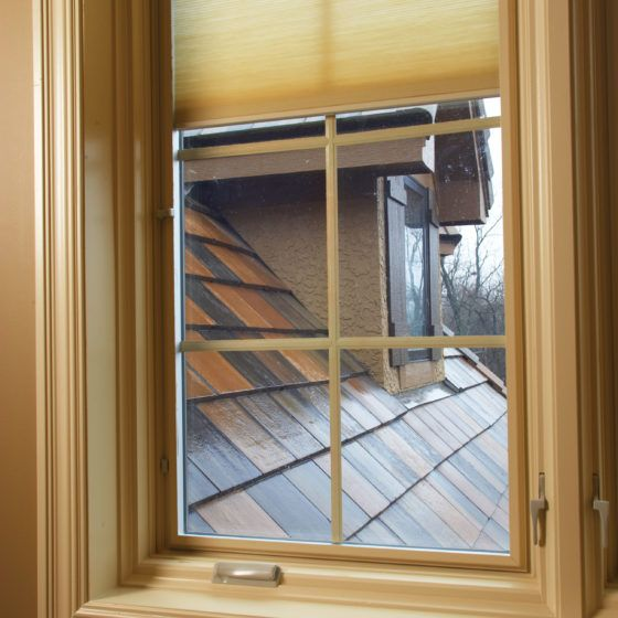 Pella_kc_health_home_ds_window
