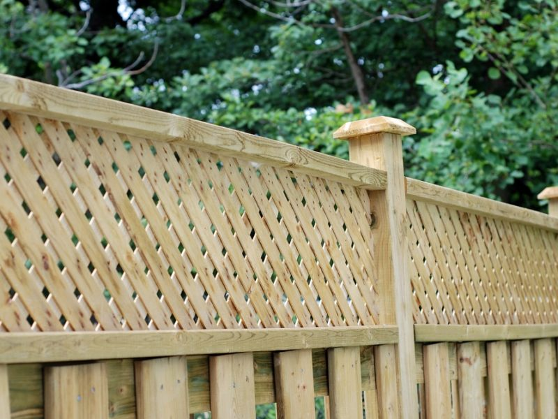 Backyard fence between homes