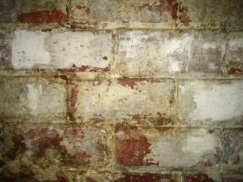 removing efflorescence from walls