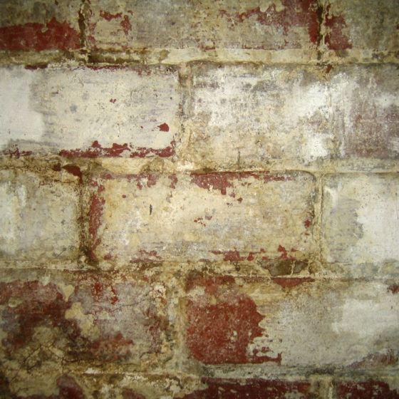basement_moisture_leak_efflorescence_shutterstock_2470202