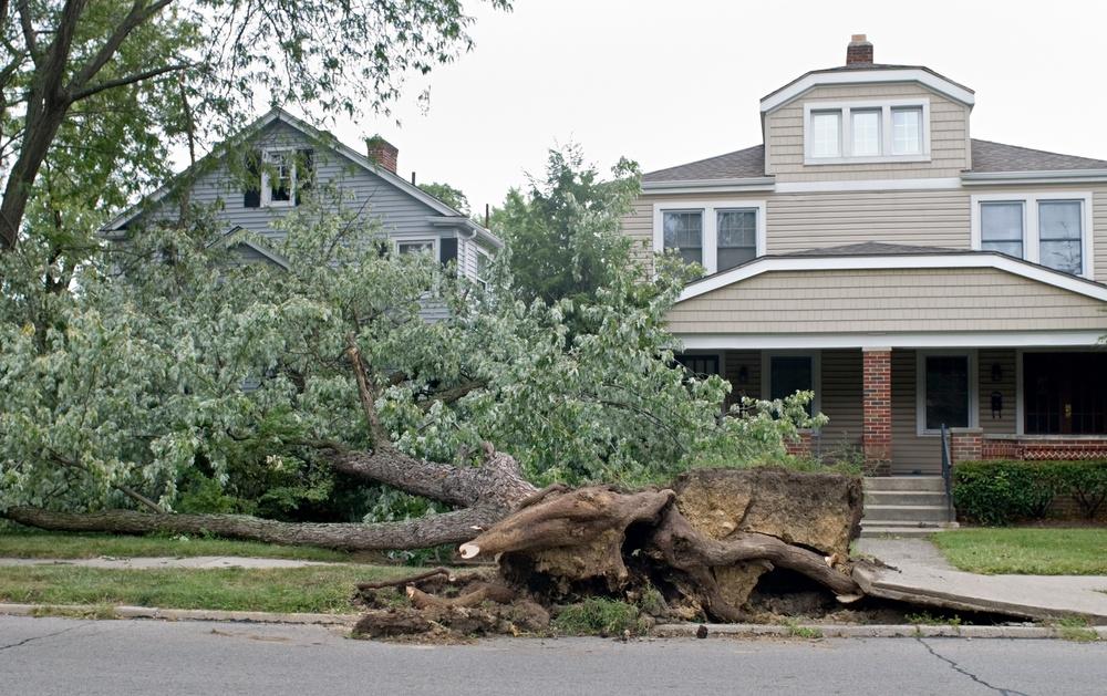 storm damage, hurricaine