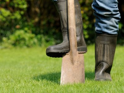 spring home improvement projects