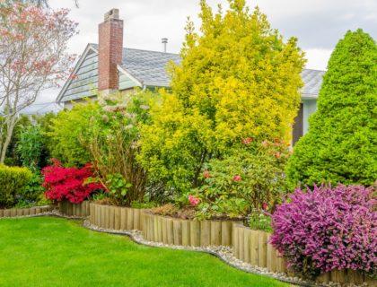 landscape_landscaping_backyard_yard_lawn_trees_shrubs_bushes_flowers_plants_shutterstock_137540417