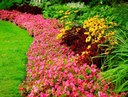 landscape_landscaping_yard_flowers_garden_shutterstock_4859515