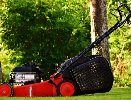 lawn-mower-1593900