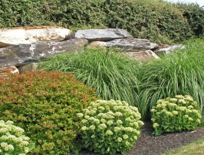 low_maintenance_landscape_landscaping_stone_rock_retaining_wall_bushes_shrubs_plants_backyard_yard_shutterstock_4193473