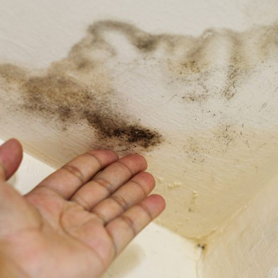 mold_ceiling_water_stain_roof_leak_sick_home_shutterstock_112413761