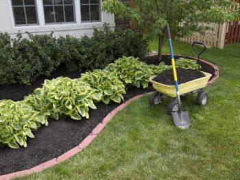 building flower bed
