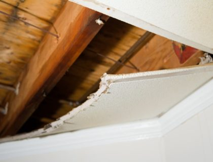 repair_water_damage_ceiling_mold_rain_storm_shutterstock_9780073