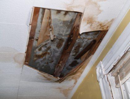 water_damage_ceiling_tile_mold_rain_storm_shutterstock_9780073