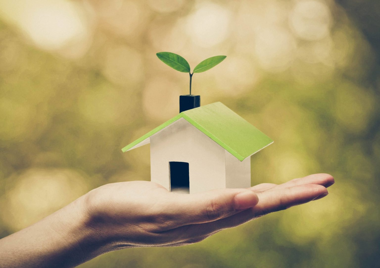 Green home in palm of a hand