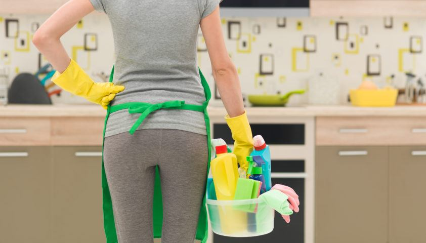 spring cleaning, home pest control