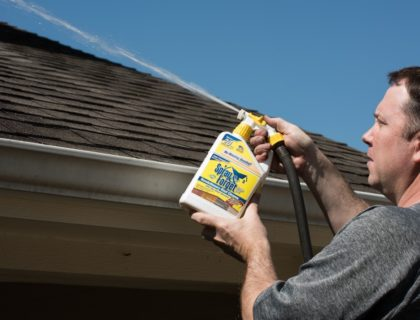 Spray-and-Forget-Roof-Cleaner_0147