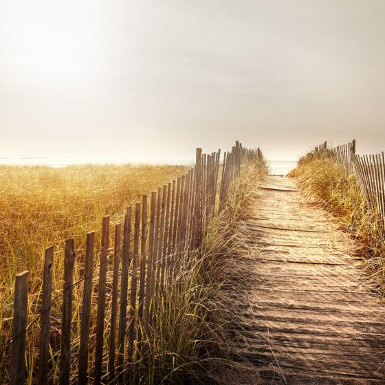 Fenced wooden boardwalk to the beach