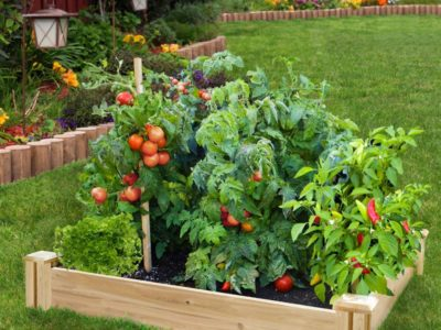 how to build a raised garden bed, home depot gardening article may 2017 Raised garden bed